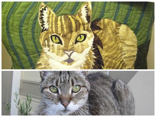 Chui Cat - San Francisco